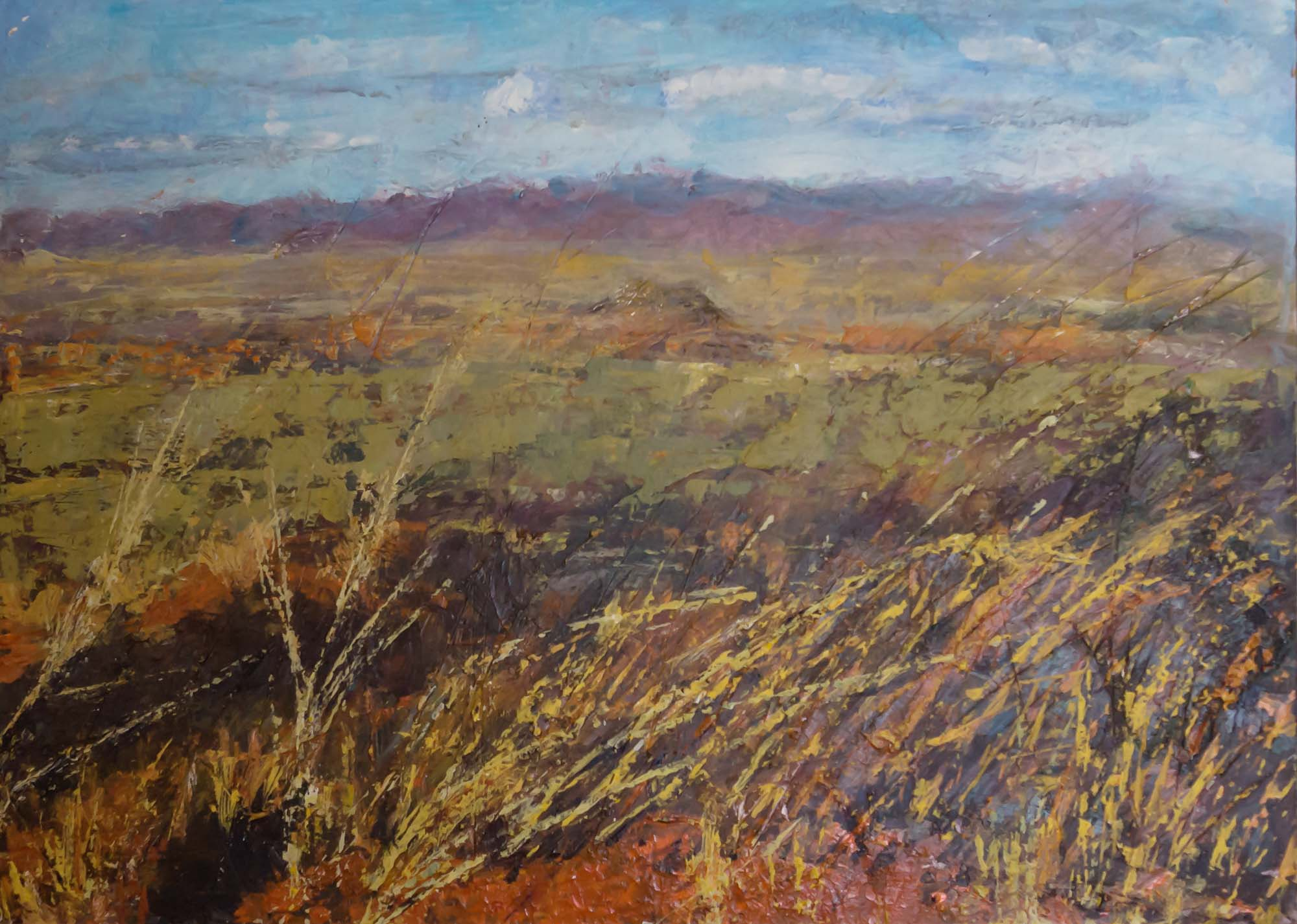 African wide landscape with grass and steppe by Ria Kieboom